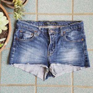 Zara Distressed Denim Cutoff High Waisted Shorts